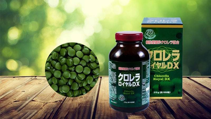 Tảo lục Chlorella Royal DX Japan